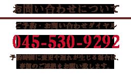ご予約・お問い合わせダイヤル 045-530-9292
